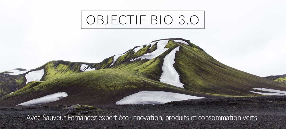 slide2_econovateur_montagne