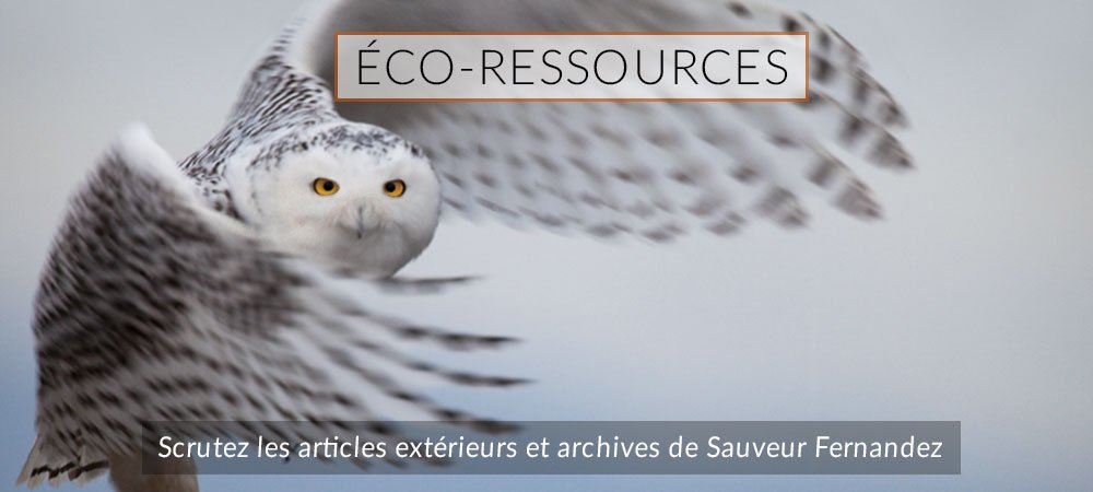 Visuel intro Menu eco-ressources